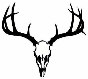 Drawn buck deer head Free  on Clipart Clip