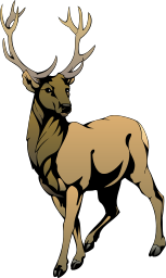 Stag clipart Download Art Clip Stag Stag