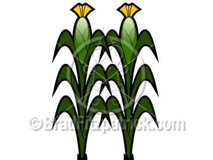 Stalk clipart Stalk Cartoon Corn  Royalty