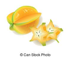 Star Fruit clipart Clipart Carambola Starfruit Illustrations vector