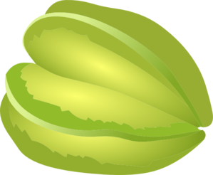 Star Fruit clipart Art Clip Art vector Clip