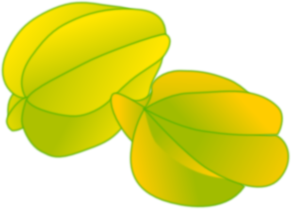 Star Fruit clipart This  image at as: