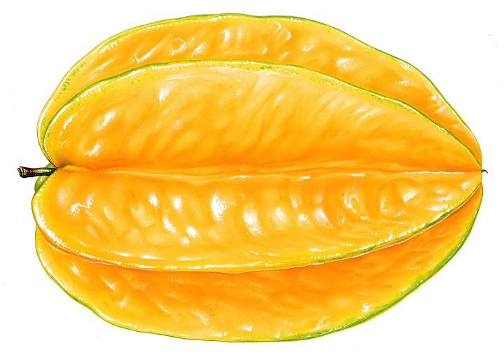 Star Fruit clipart Photo on and about Berries