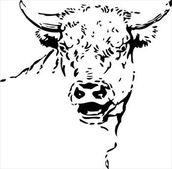 Stare clipart Bull  Graphics Free stare