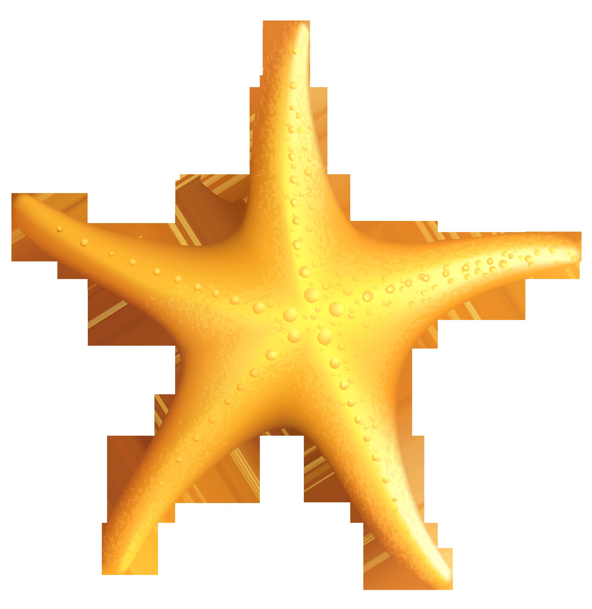Tropical Fish clipart starfish #9