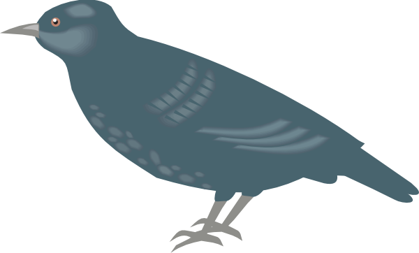 Starling clipart Art royalty com vector clip