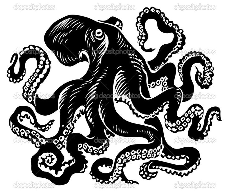 Octopus clipart steampunk Pin about Illustrations images on