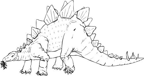 Stegosaurus clipart black and white Stegosaurus Stegosaurus; Animals
