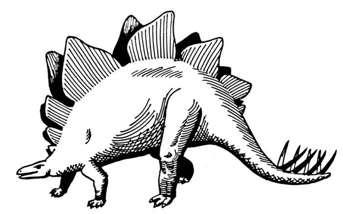 Stegosaurus clipart black and white A Stegosaurus This Black White
