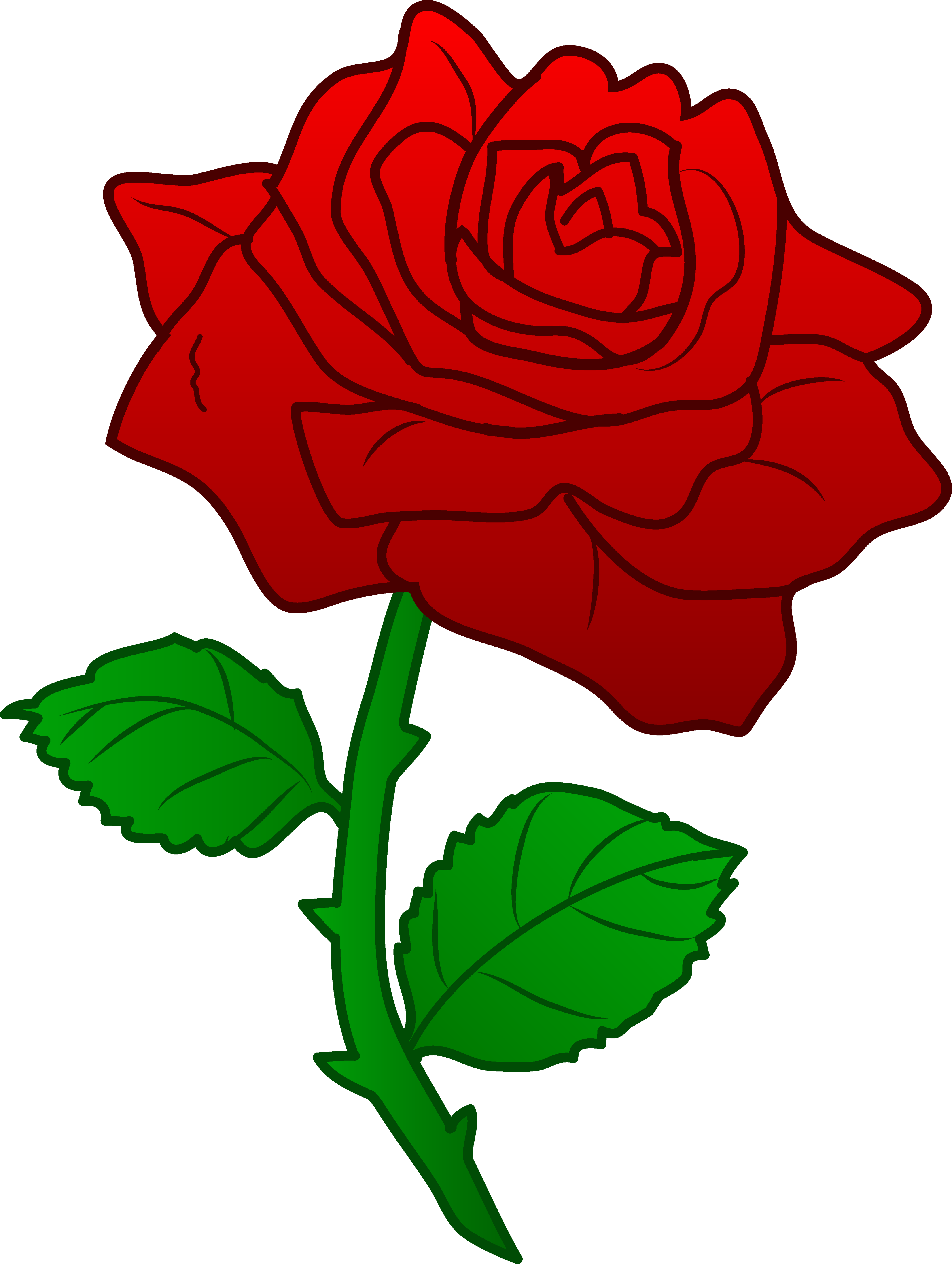 White Rose clipart simple #12