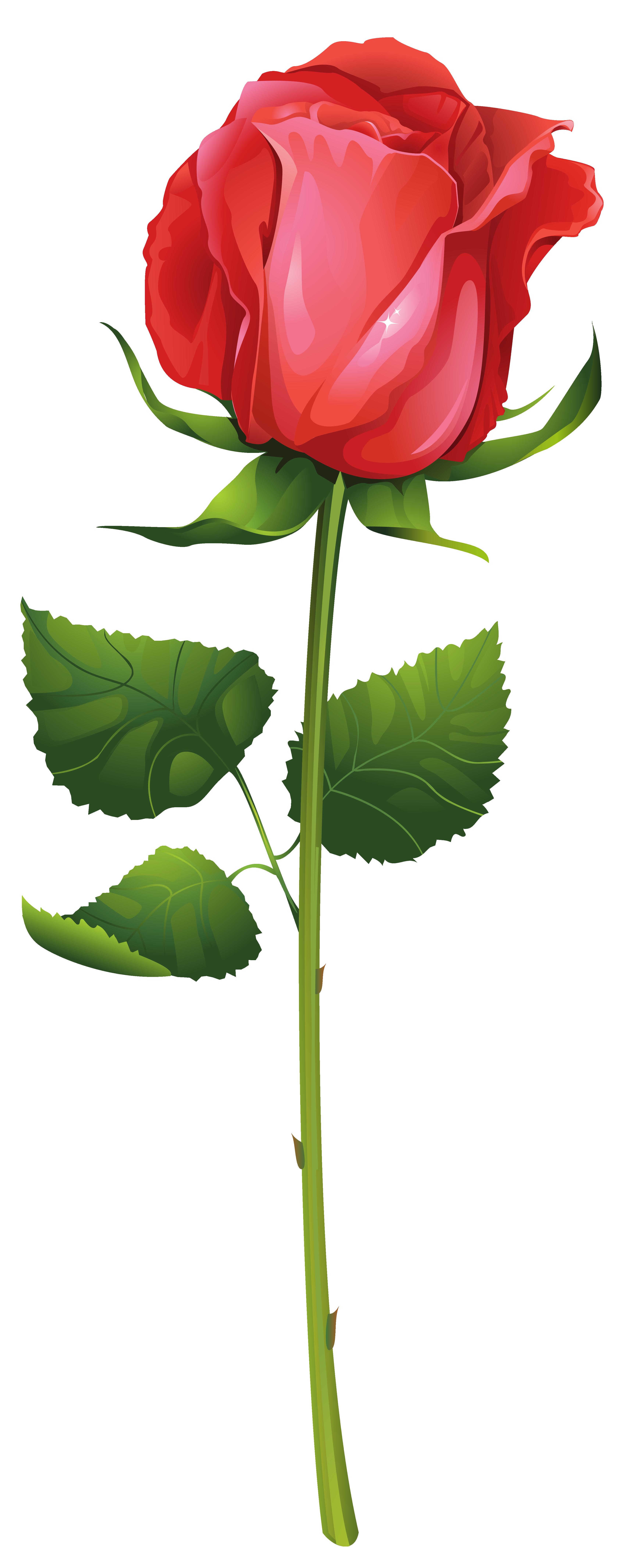 Petal clipart rose stem Gallery Clip  High Yopriceville