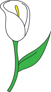 Elower clipart white lily Clipart Clipart With Flower Panda