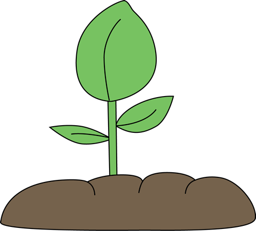 Beans clipart seedling Art Cliparting Clip Cartoon house