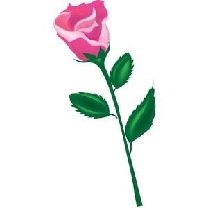 Rose clipart long stem rose #1