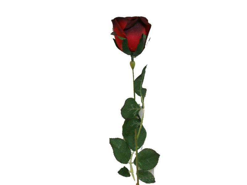Stem clipart long stem rose Free Art Rose library Stem
