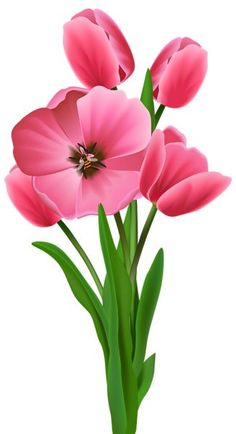 Stem clipart pink green flower With more  Image this