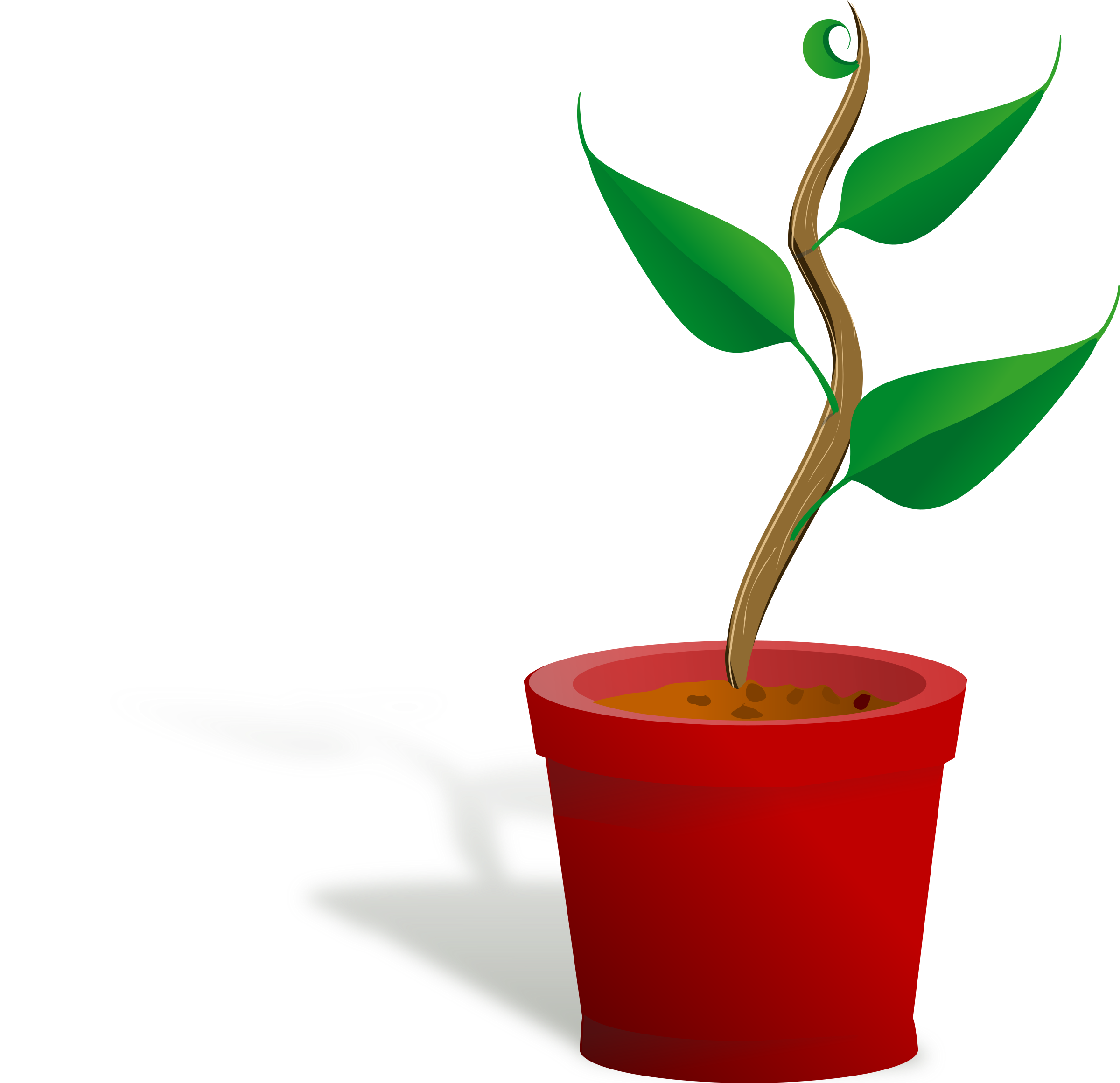 Plant growing growing plant Clipart