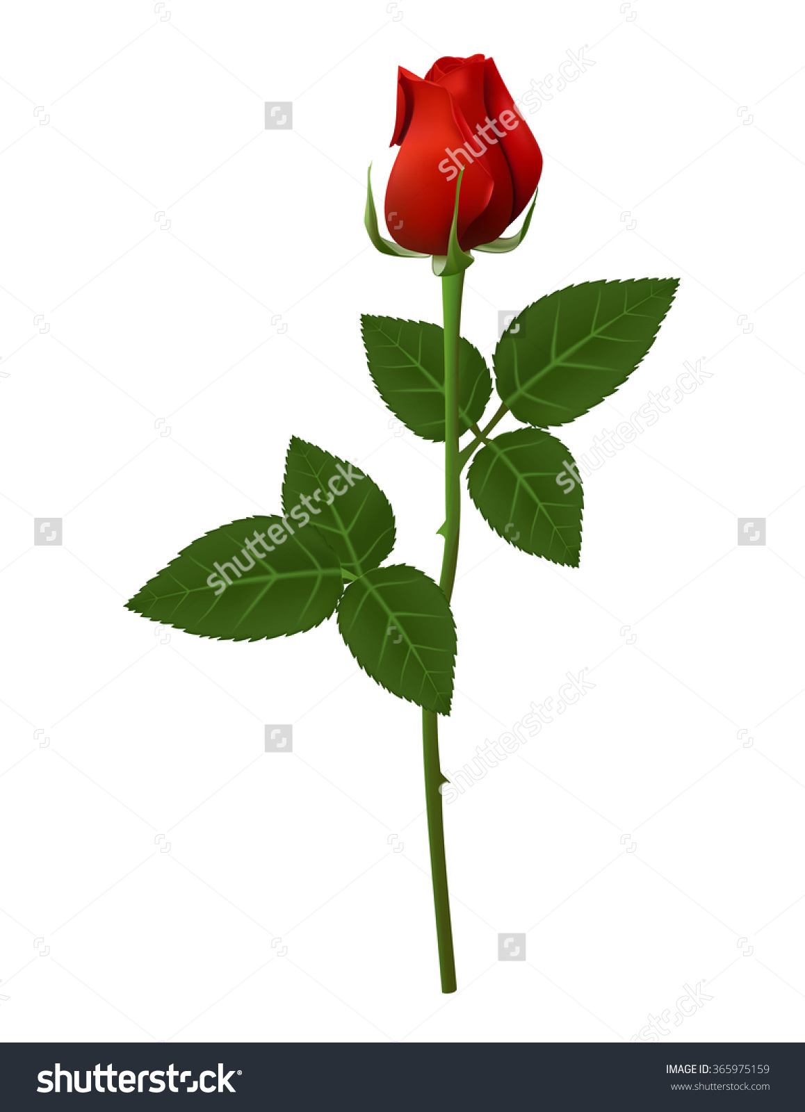 Red Flower clipart long #6