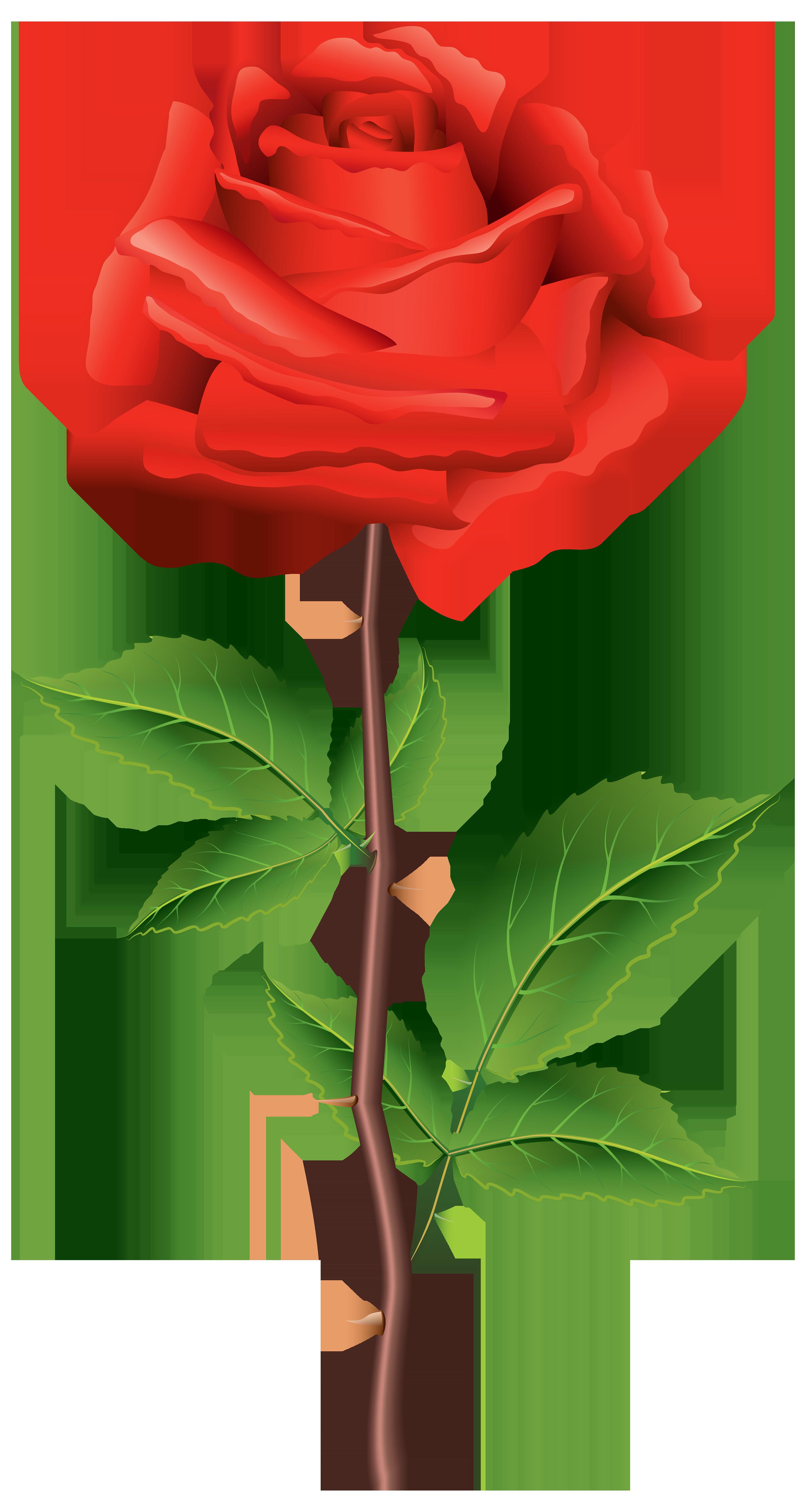 Petal clipart rose stem Best Rose Clipart WEB Red