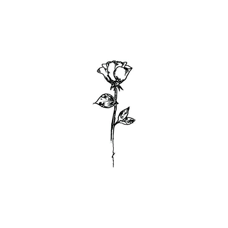 Drawn rose rose tree This ideas rose Pin Best