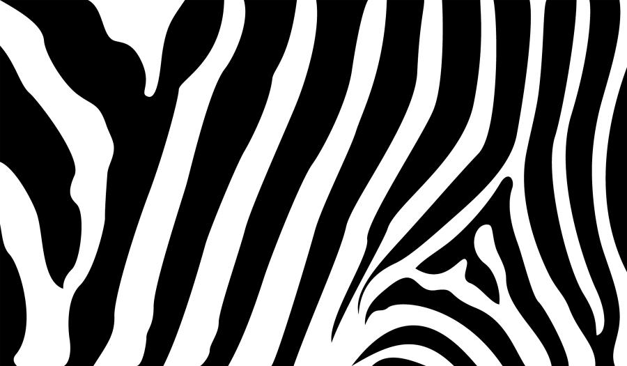 Stripe clipart vector #6