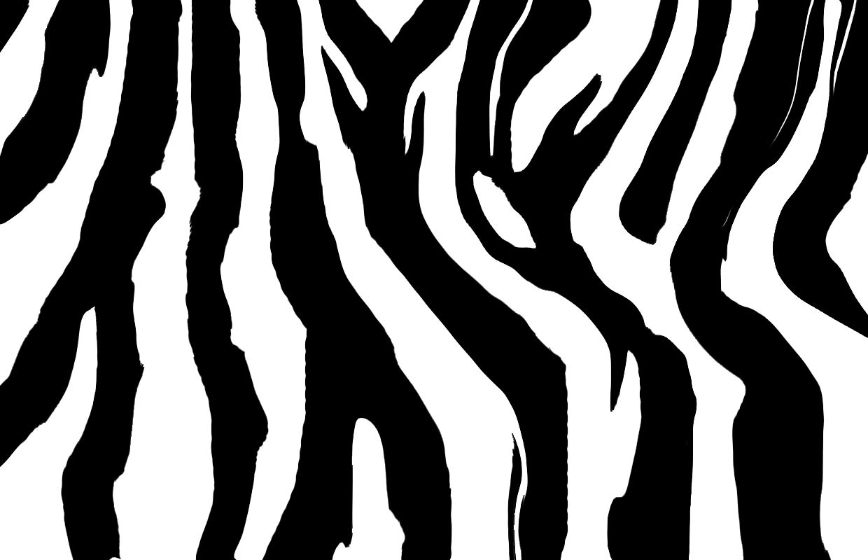 Zebra clipart stripes Zebratiger Wall Off stripe zebra