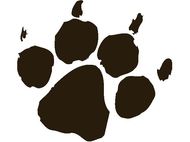 Footprint clipart realistic Best Pinterest Lion ClipArt Index