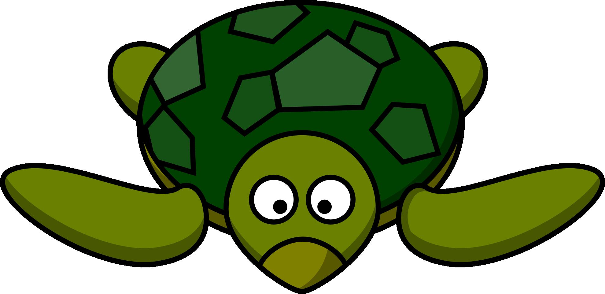Holydays clipart turtle Cartoon Turtle 150(K)  Turtle