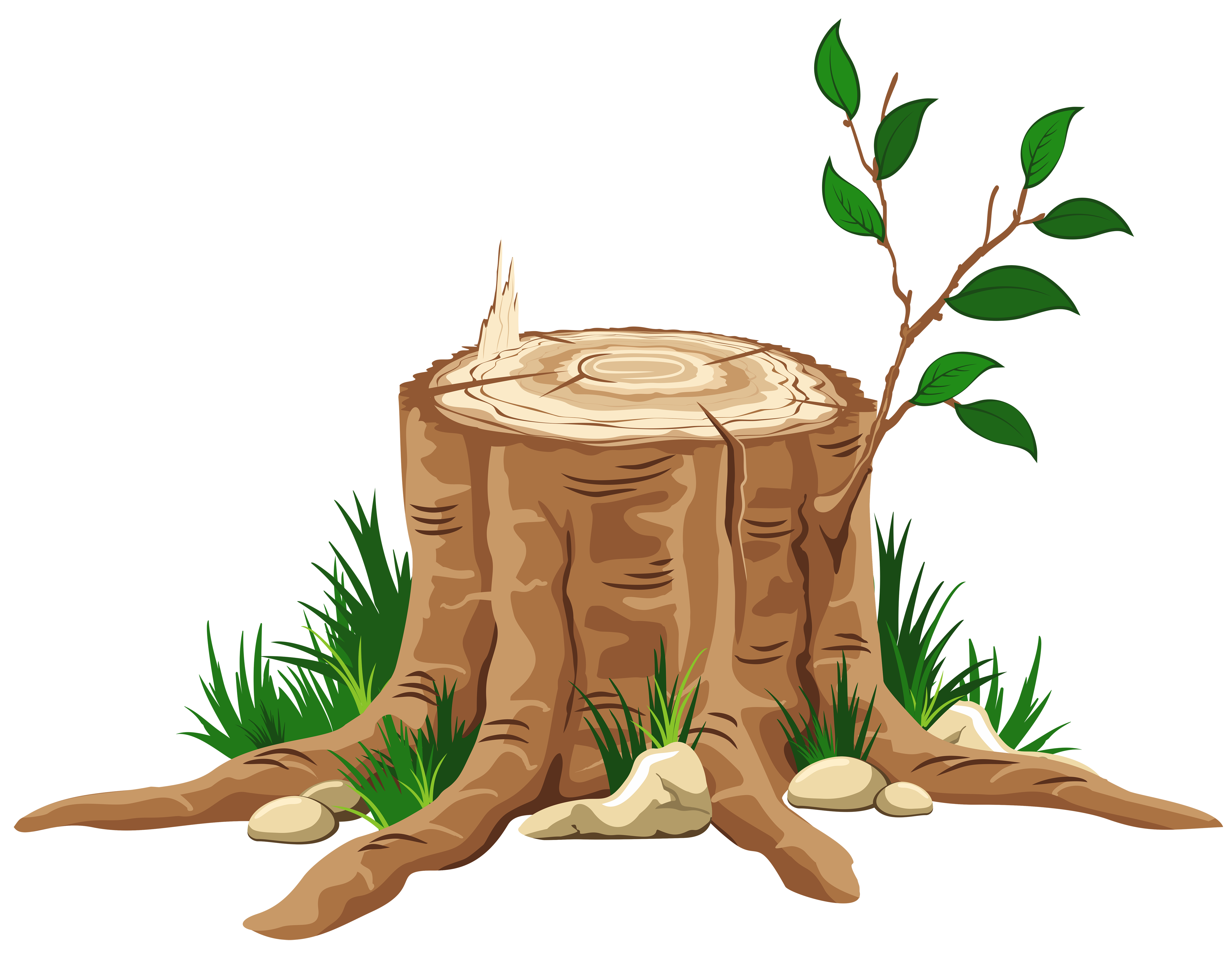 Branch clipart tree log Stump Tree PNG collection tree