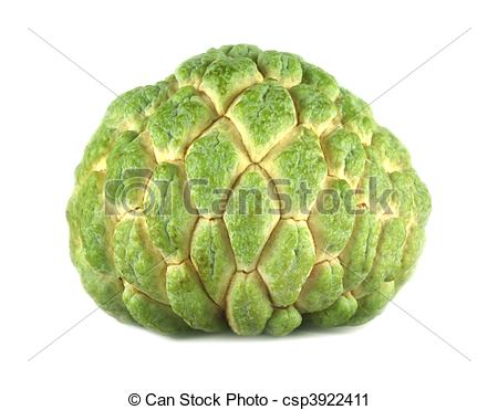 Sugar Apple clipart Photography white of over Custard