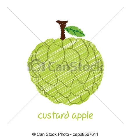 Sugar Apple clipart EPS design apple creative 119