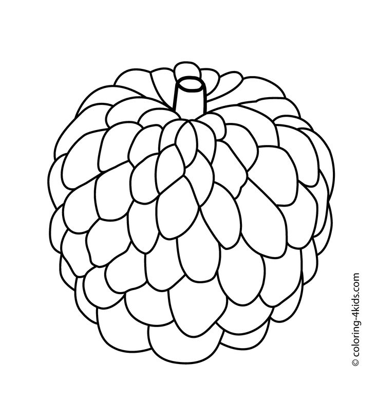 Sugar Apple clipart Custard White Apple And Custard