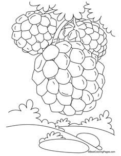 Sugar Apple clipart Coloring clipartsgram Custard Clipart Custard