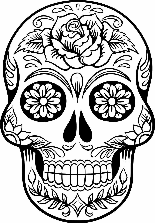 Sugar Skull clipart outline Skull que Buscar sugar Google