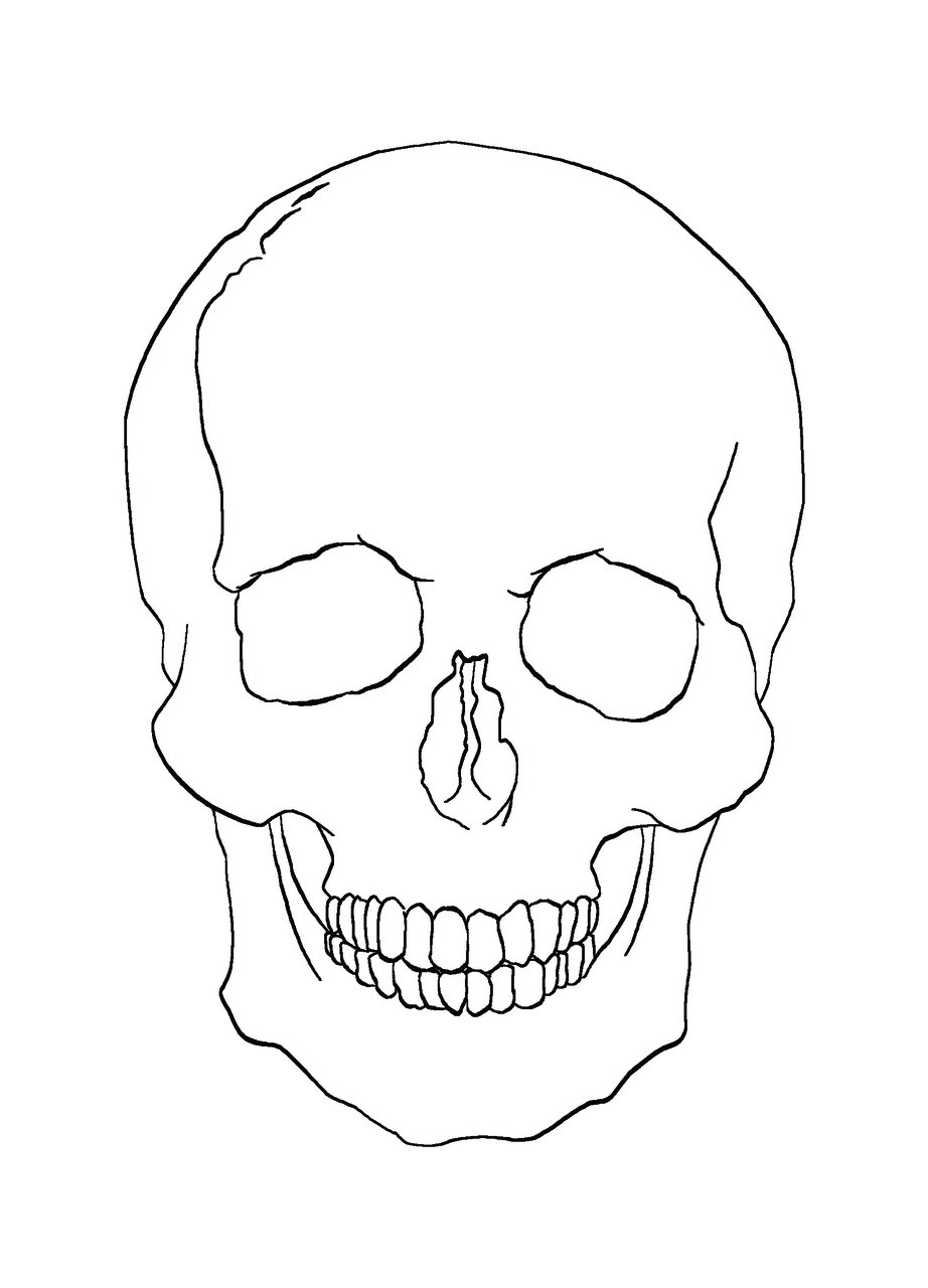 Sleleton clipart simple human  With Outline Outline