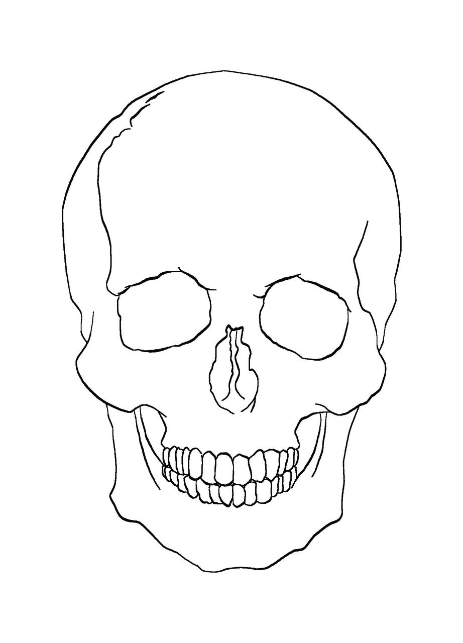 Sugar Skull clipart outline Skull Skull Benlucasgallerynet Skull
