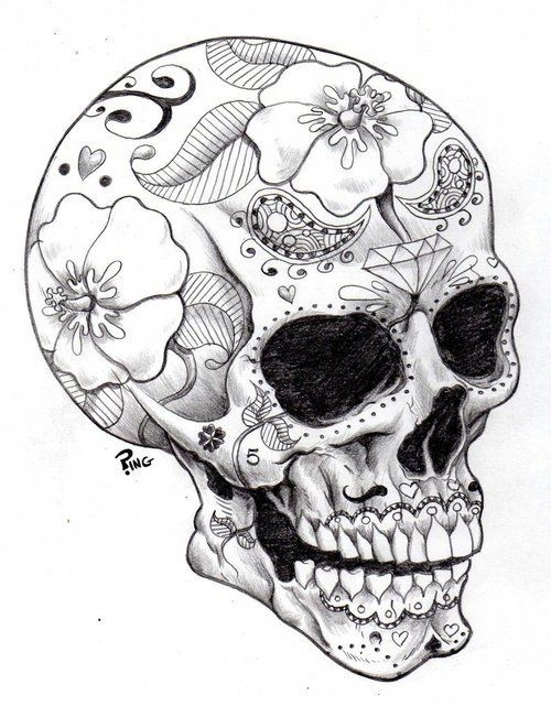 Drawn skull goat Pumpkin ♥! best 25+ Skull