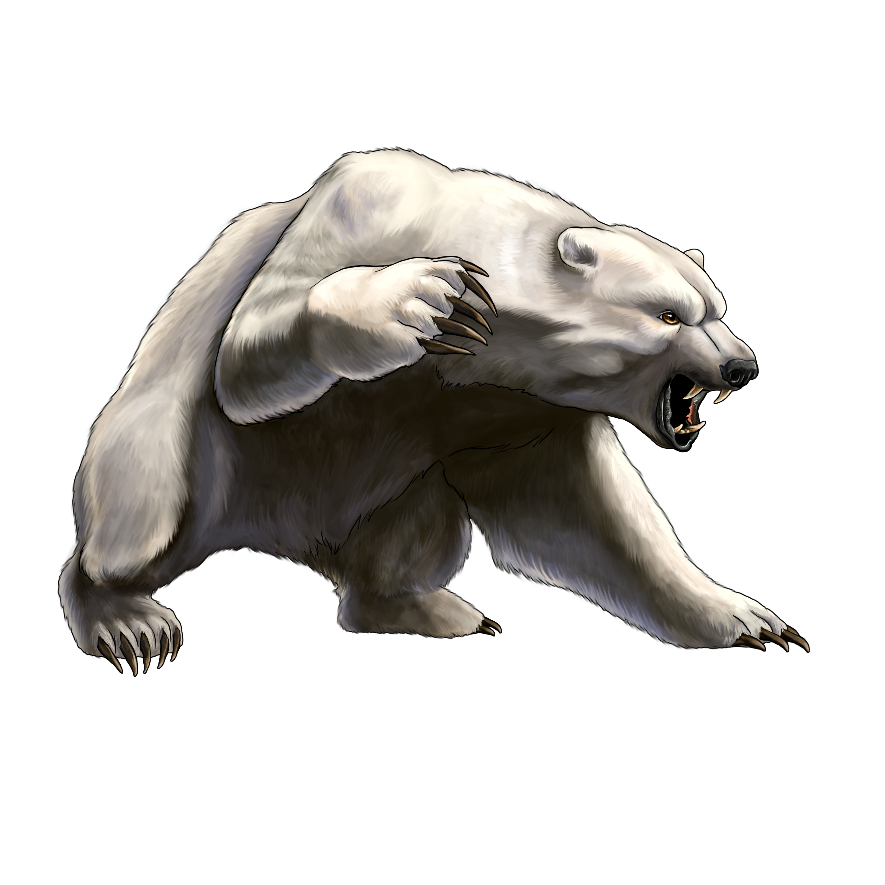 Drawn polar  bear angry Clipartion #29825 Bear Clipart Angry