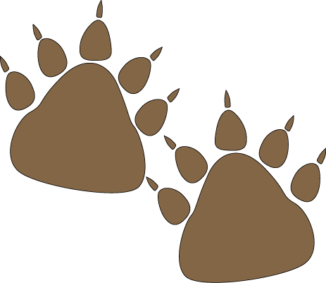 Grizzly Bear clipart paw print #11