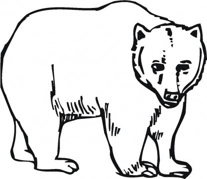 Grizzly Bear clipart colouring #12