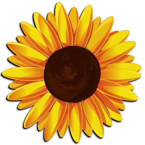 Sunflower clipart Clipartion art Sunflower Clipartix clip