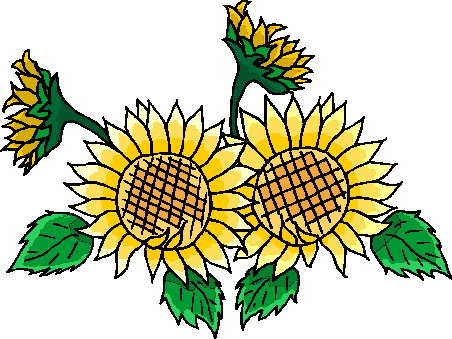 Sunflower clipart wallpaper Sunflower 3 Cliparting wallpapers com