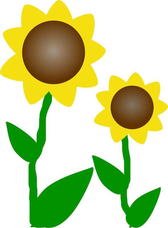 Yellow Flower clipart big flower Sunflower :: FREE Clipart Net