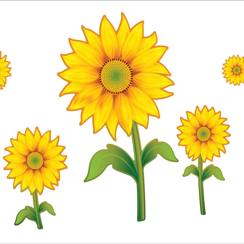Sunflower clipart wallpaper Cartoon Sunflower Clip Free