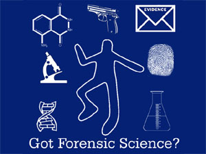 Mystery clipart forensic science  ESL Police Prison Resources