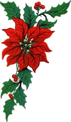 Red Flower clipart swag Swag  Clipart Christmas