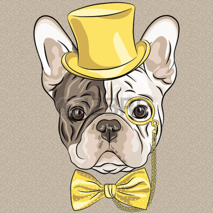 Swag clipart hipster glass Hipster Best on gold dog