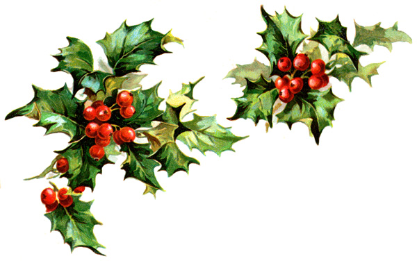 Holley clipart swag Holly Holly Clipart Winter cliparts