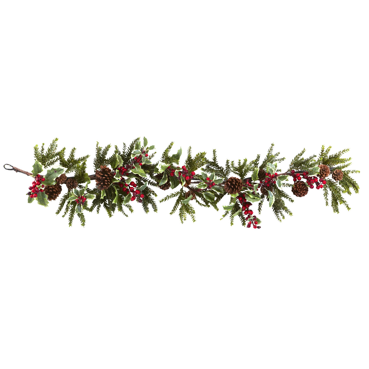 Pine Cone clipart coniferous forest Clipart Cliparts Garland Holly free