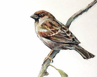 Swamp Sparrow clipart Tree Sparrow Etsy Oil Sparrow